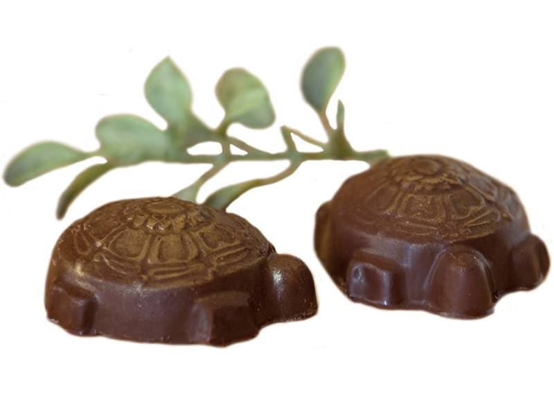 Pecan Turtles 2 Pieces